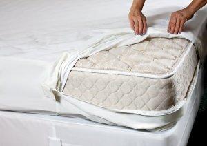 bed bug encasement